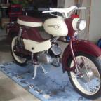 SL385098 (Klein)