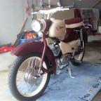 SL385097 (Klein)